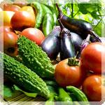 夏野菜をもっと楽しむ!